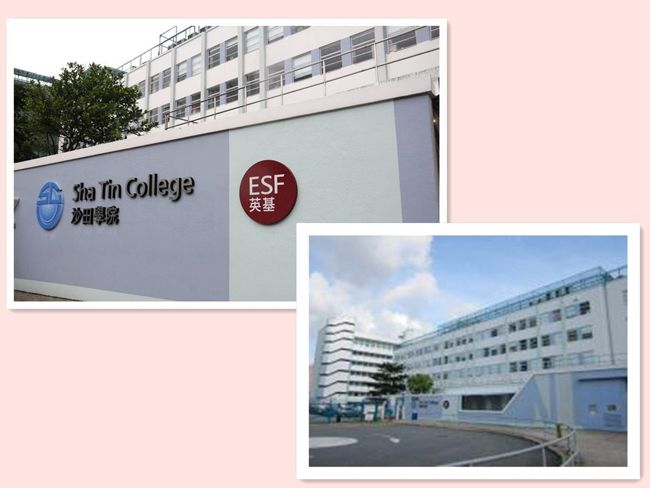 Shatin College